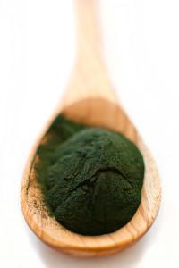 algae powder chlorella