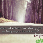 """""""It does not matter how slowly you go as long as you do not stop."""" - Confucius"""